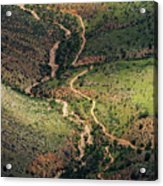 Bright Angel Trail Abstract Acrylic Print