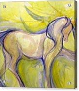 Bright Dancer Acrylic Print