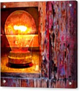 Bright Idea Acrylic Print by Skip Hunt