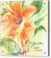 Bright Orange Flower Acrylic Print
