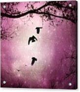 Brilliant Pink Surreal Sky Acrylic Print