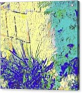 Brimstone Blue Acrylic Print
