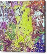 Brimstone Fantasy Acrylic Print