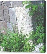 Brimstone Wall Acrylic Print