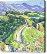 Briones Crest In May, Lafayette, Ca Acrylic Print