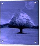 Brisk Silver Moon Acrylic Print
