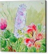 British Wild Flowers Acrylic Print