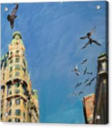 Broadway Pigeons No. 1 Acrylic Print