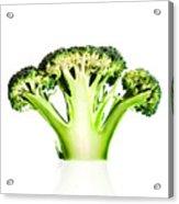 Broccoli Cutaway On White Acrylic Print