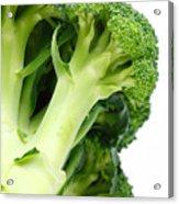 Broccoli Acrylic Print by Gaspar Avila