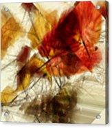 Broken Leaves Acrylic Print
