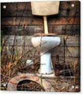 Broken Toilet Acrylic Print by Carlos Caetano