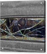 Broken Window Theory Acrylic Print