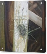 Bromeliad And Bamboo Acrylic Print