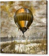 Bronze Beach Ballooning Acrylic Print