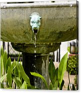 Bronze Civit Head Fountain Acrylic Print