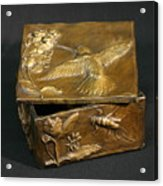 Bronze Hummingbird Box Acrylic Print by Dawn Senior-Trask