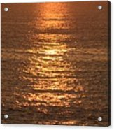 Bronze Reflections Acrylic Print