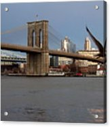 Brooklyn Bridge And Bird In Flight Acrylic Print