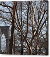 Brooklyn Bridge Thru The Trees Acrylic Print
