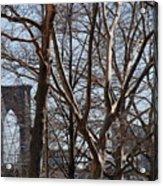 Brooklyn Bridge Thru The Trees Acrylic Print