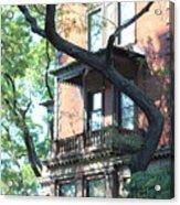 Brooklyn Building And Tree Acrylic Print