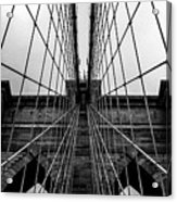Brooklyn's Web Acrylic Print