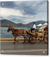 Brown Horse Drawn Carriage Acrylic Print