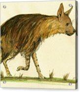 Brown Hyena Animal Art Acrylic Print