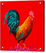Brown Rooster On Red Background Acrylic Print