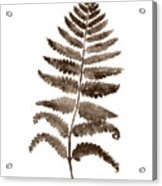 Fern Leaf Botanical Poster, Brown Wall Decor Modern Home Art Print, Abstract Watercolor Painting Acrylic Print