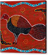 Brush Turkey Acrylic Print