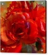 Brushed Flowers Acrylic Print