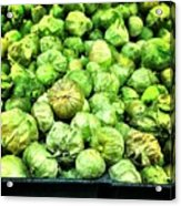 Brussels Sprouts Acrylic Print