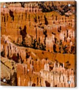 Bryce Canyon Series #4 Acrylic Print