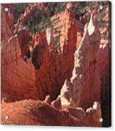 Bryce Canyon Look Acrylic Print