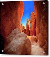 Bryce Canyon Narrows Acrylic Print
