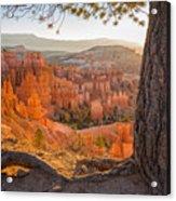 Bryce Canyon National Park Sunrise 2 - Utah Acrylic Print