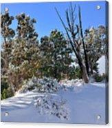 Bryce Canyon Snowfall Acrylic Print
