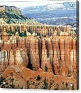 Bryce Canyon Vertical Hoodoos Acrylic Print