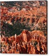 Bryce Canyon Vertical Acrylic Print