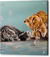 Bubble Cats Acrylic Print