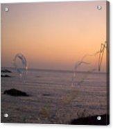 Bubbles On The Beach Acrylic Print