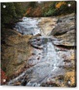 Bubbling Spring Branch Cascades Acrylic Print