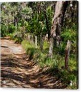 Walking With God Acrylic Print