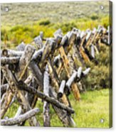 Buck And Rail Fence In The High Country Acrylic Print