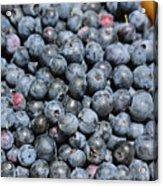 Bucket Of Blueberries Acrylic Print