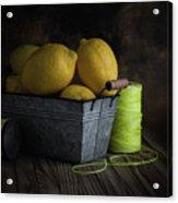 Bucket Of Lemons Acrylic Print