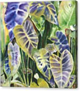 Bucket Of Purple Taro Acrylic Print