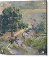Buckhorn Canyon Acrylic Print
